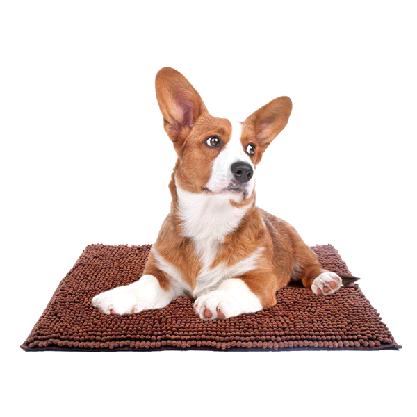Super Absorbent Microfiber Pet Mat