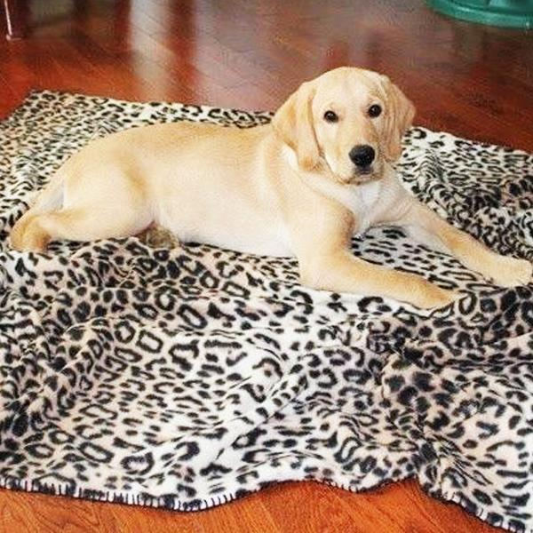 Pets - Luxury Fleece Pet Blanket