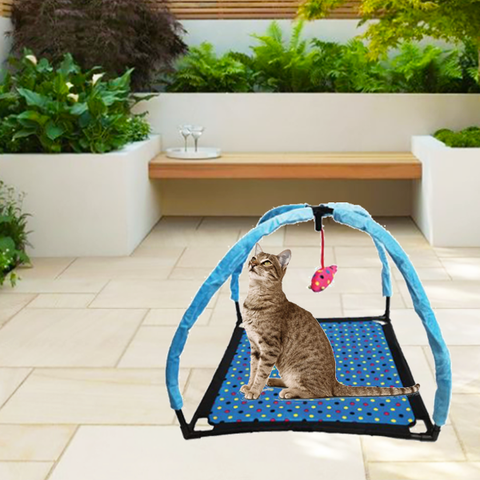 """Foldable Cat Tent with Hanging Toy"" Kitten Activity Center Play Mat"
