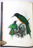 A Monograph of the Meropidae, or family of the Bee-eaters