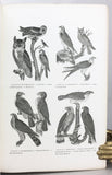 American Ornithology; or, the Natural History of the Birds of the United States.  Illustrated with plates engraved from drawings from nature, 4 volumes bound in 1 thick volume, Popular edition