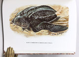 The Turtles of Venezuela, this is the Patrons' Edition, in two volumes, limited to 300 copies, each signed by the authors (Pritchard and Trebbau), the artist (Voltolina), and the two editors (Alder and Savitzky), this is copy no. 124.