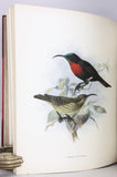 A Monograph of the Nectariniidae, or Family of Sunbirds