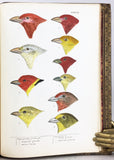A History of North American Birds: Land Birds, in 3 volumes, complete