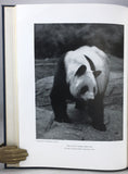 The Giant Panda: A Morphological Study of Evolutionary Mechanisms