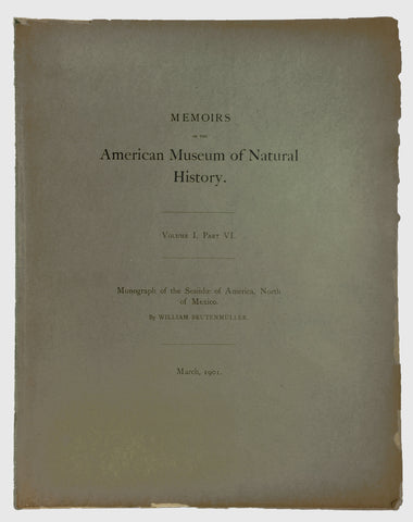 Monograph of the Sesiidae of America, north of Mexico