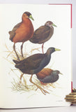 Rails of the World. A Monograph of the Family Rallidae (the signed limited edition)