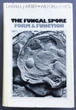 The Fungal Spore: Form and Function