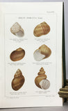 Monograph of the Land and Freshwater Mollusca of the British Isles, in 4 volumes (1894-1924), complete