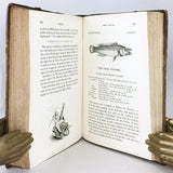 A History of British Fishes, in two volumes (second edition)