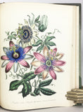 The Ladies' Flower-Garden [comprising] Ornamental Annuals (1844); Ornamental Perennials (1850); Ornamental Bulbous Plants (1850); Ornamental Greenhouse Plants (1860) and British Wild Flowers (1859), in 5 volumes, complete
