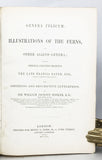 Genera Filicum, or Illustrations of the Genera of Ferns and other Allied Genera