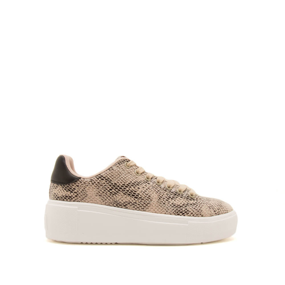 Maxmino-01 Beige Black Snake Lace Up Sneakers