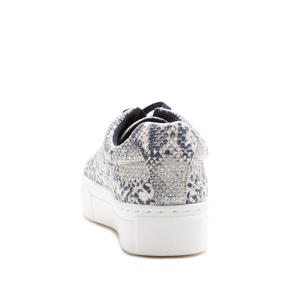 Royal-09A White Grey Snake Lace Up Sneakers