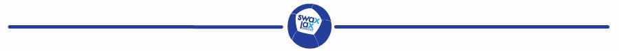 Swax Lax soft lacrosse training ball - line with ball