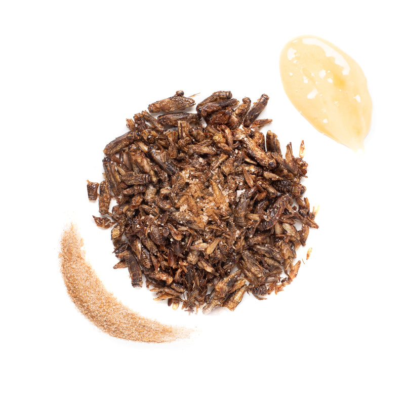 Honey Roasted Crickets 15g