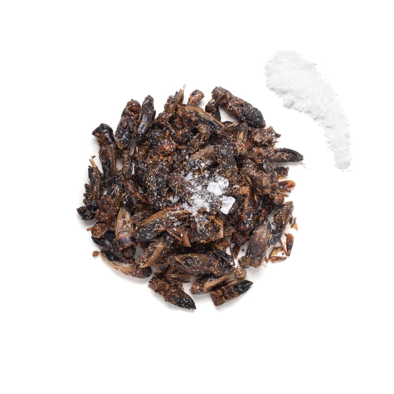 Lightly Salted Big Crickets 20g