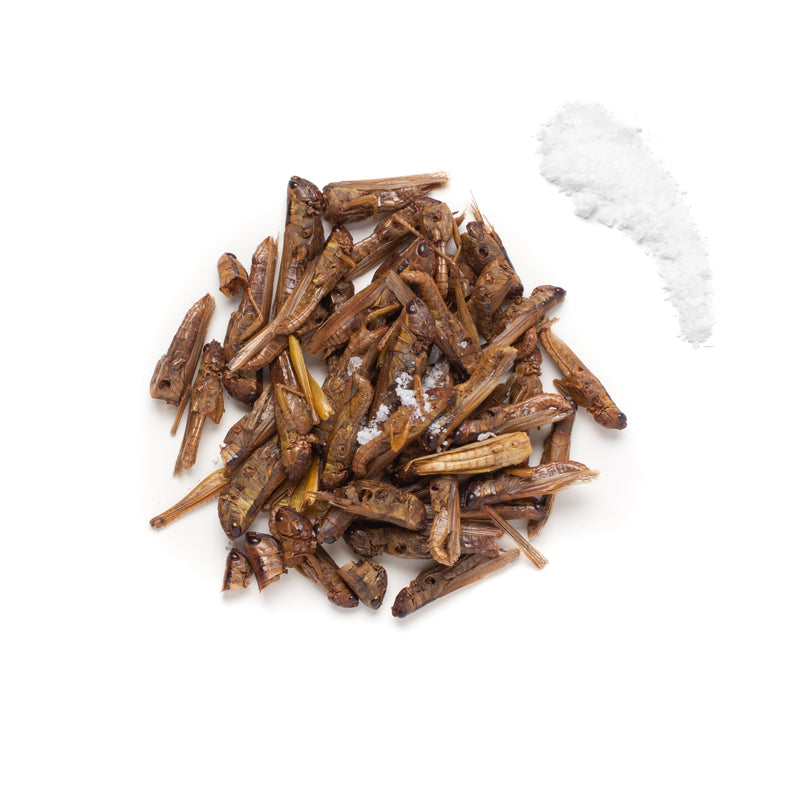 Lightly Salted Grasshoppers 10g