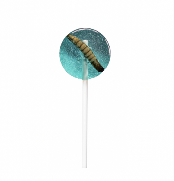 Blueberry Mealworm Lollipop 20g