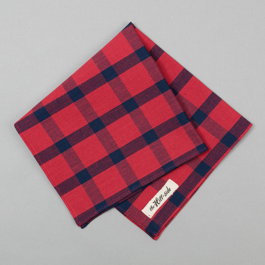 The Hill-Side - Indigo/Red Windowpane Pocket Square - PS1-379 - image 1