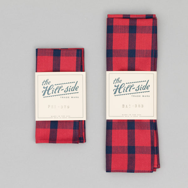 The Hill-Side - Indigo/Red Windowpane Pocket Square - PS1-379 - image 2