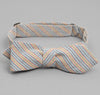 The Hill-Side - INDIGO/PASTEL STRIPE BOW TIE - BTS-103