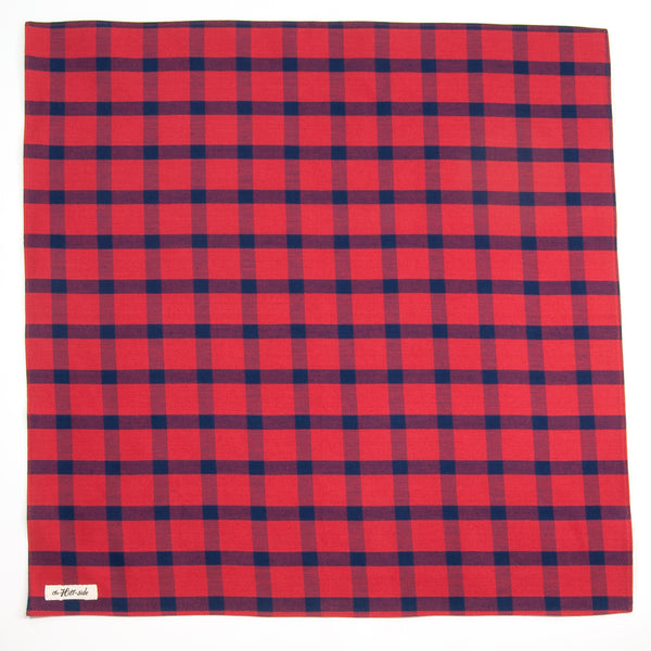 The Hill-Side - BA1-379 - Indigo / Red Windowpane Bandana