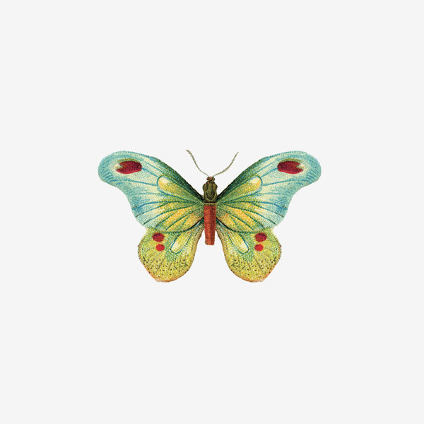 Temporary Tattoo Pairs - Butterfly 1