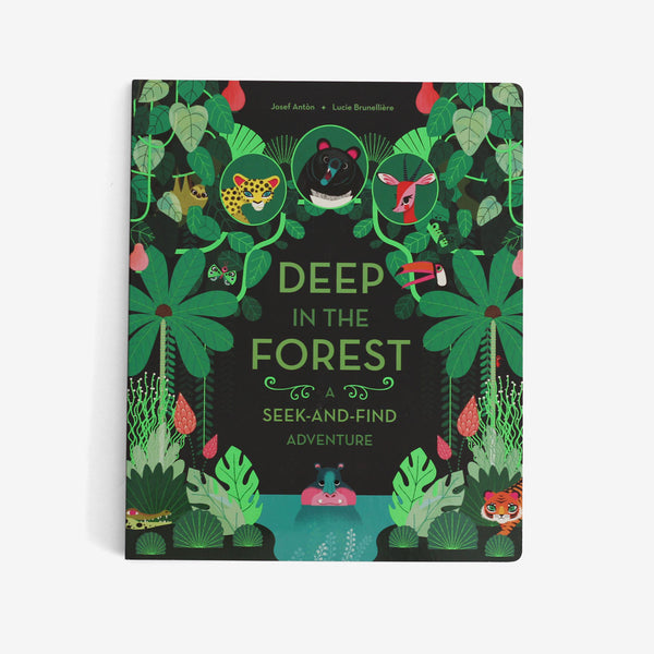 Deep in the Forest: A Seek & Find Adventure