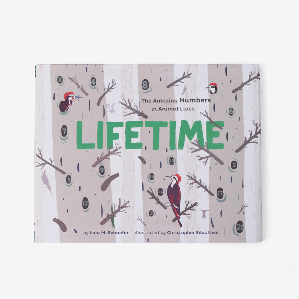 Lifetime - The Amazing Numbers in Animal Lives