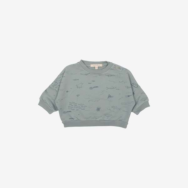 Pima Cotton French Terry Sweatshirt - The Ocean Story in Chinoise Green