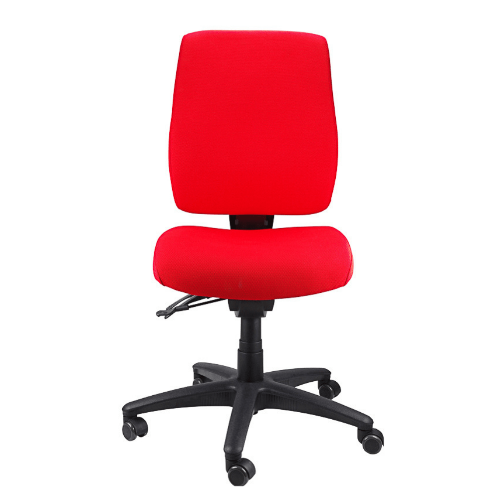 Ergoform Ergonomic Chair