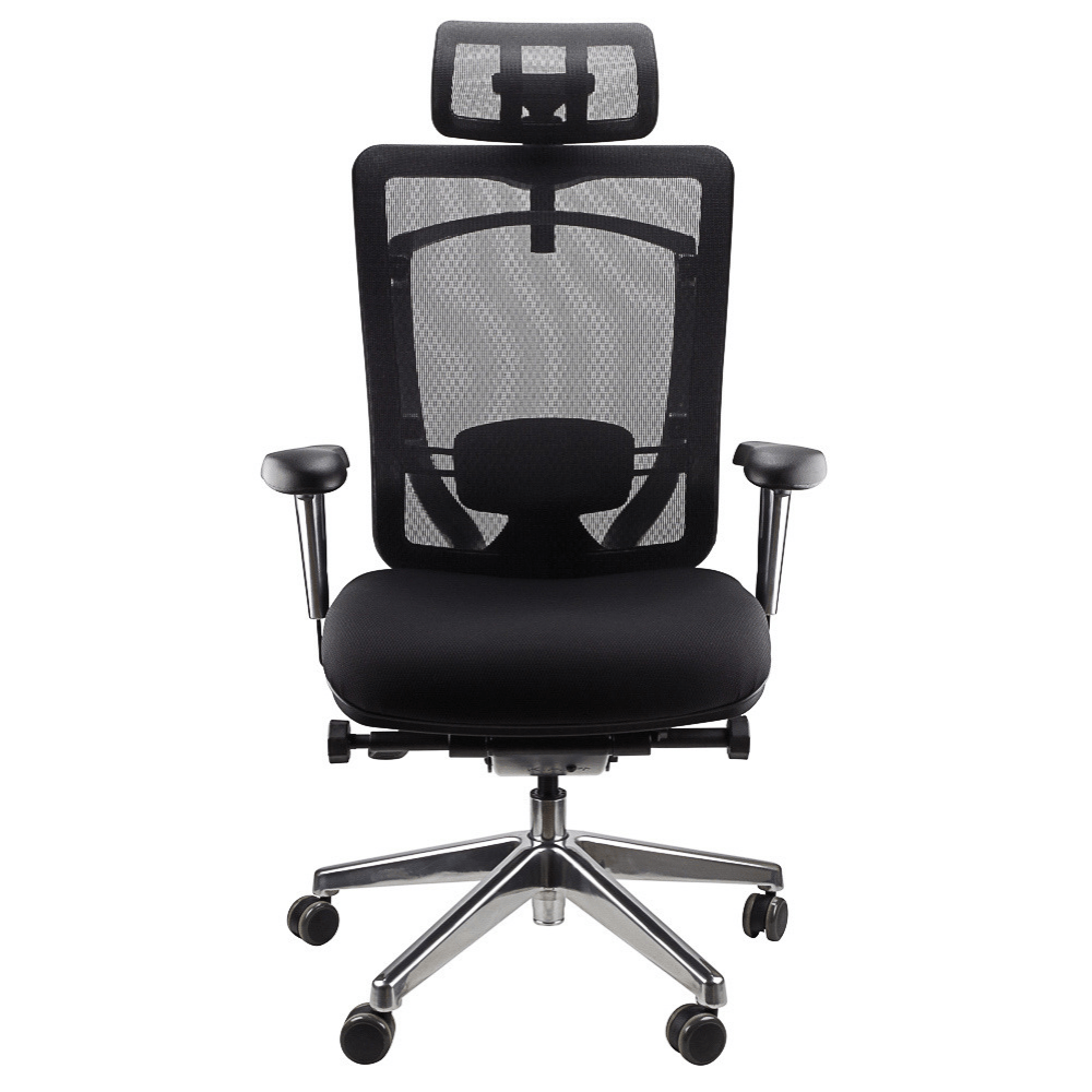Nicholas Mesh Back Executive Ergonomic Office Chair