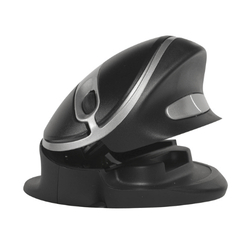 Ergonomic Mouse - Oyster Mouse