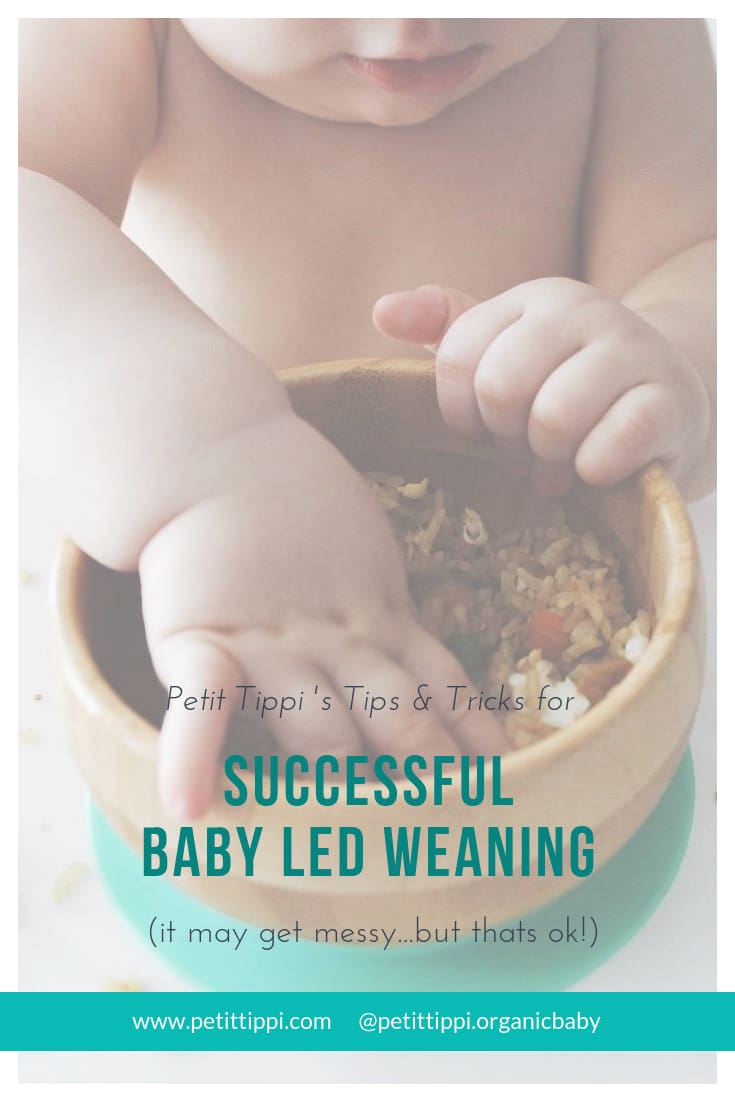 Successful Baby Led Weaning - Petit Tippi