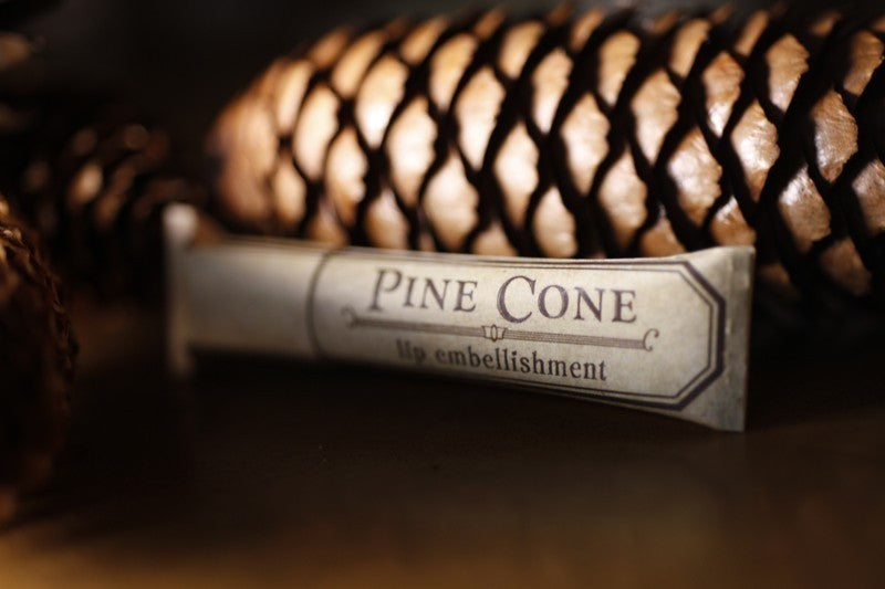 Pine Cone Lip Balm - 3 for $ of 2