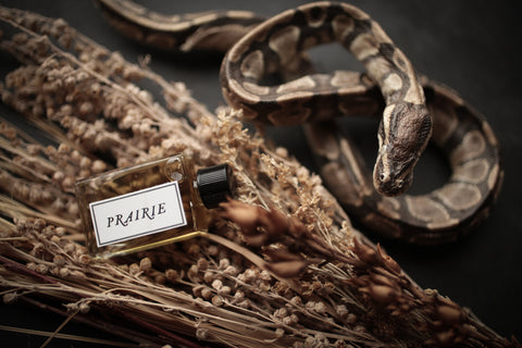 PRAIRIE - Perfume for the 5.4.19 New Moon