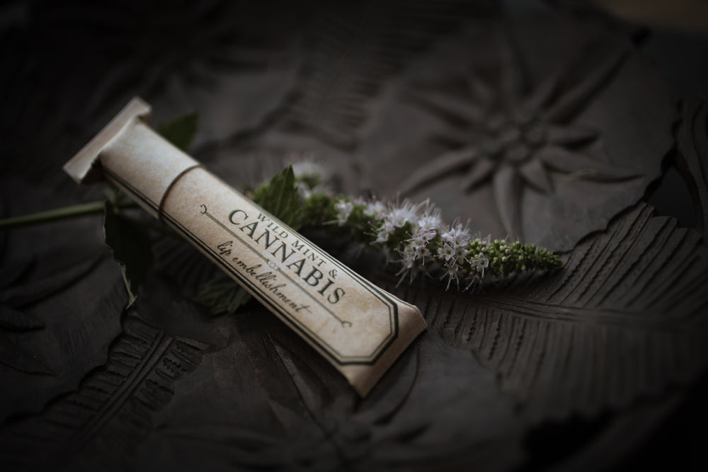 Wild Mint + Cannabis Lip Balm
