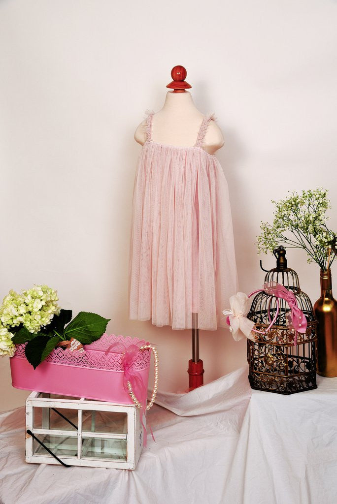Mae Li Rose  Blush Trapeze Tulle Dress