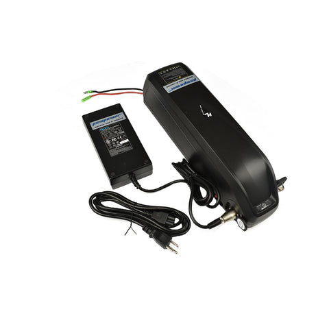 1500W bike battery with charger