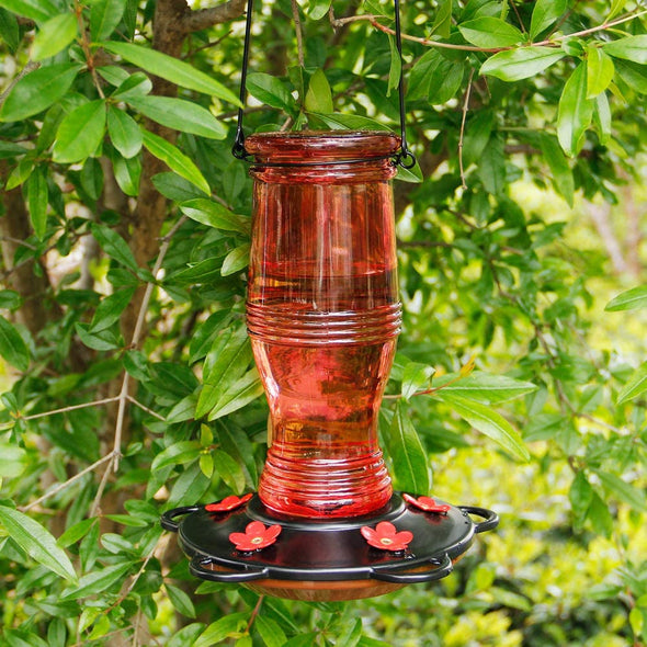 Beautiful Red Glass Hummingbird Feeder - Holds 26 oz of Nectar
