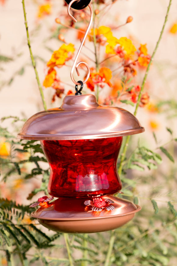 Red Glass & Copper Hummingbird Feeder - We Love Hummingbirds - 6