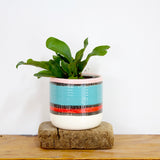 Liquorice All Sorts Jumbo Planter S - Black, Lagoon, Dusty Pink & Indian Red