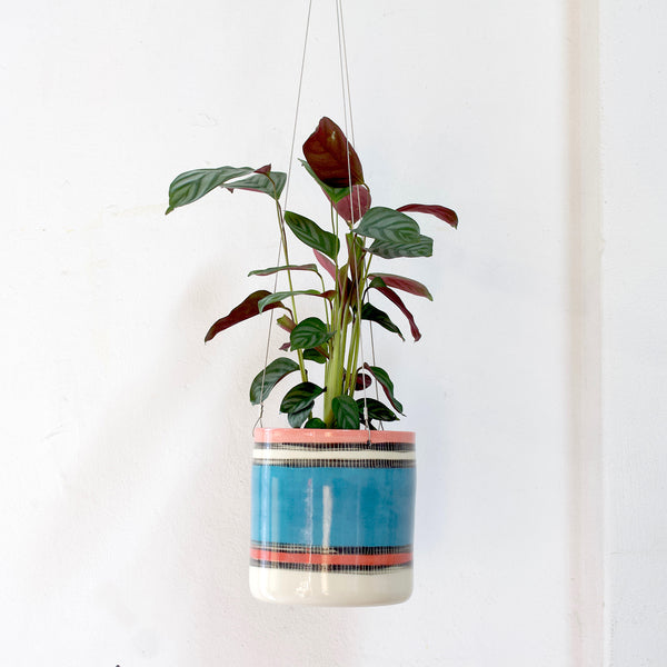 Liquorice All Sorts - Outdoor Jumbo Hanging Planter - Lagoon, Galah & Indian Red