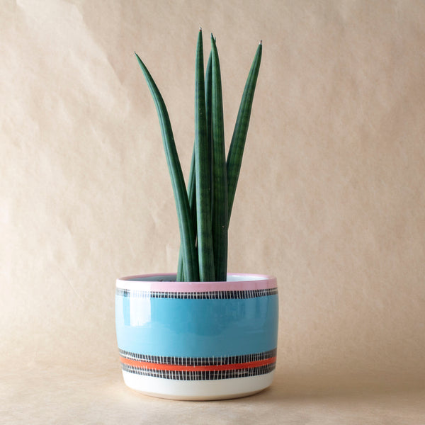 Liquorice All Sorts Planter L - Black, Lagoon, Dusty Pink & Indian Red