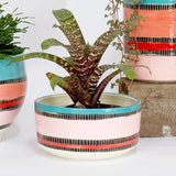 Liquorice All Sorts Large Planter - Black, Dusty Pink, Lagoon & Indian Red