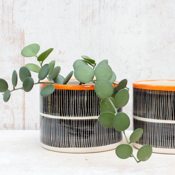 Stripey Road  Large Planter - Black & Nasturtium