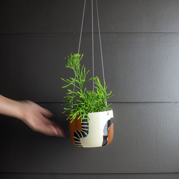 Earth Pathways - Large Hanging Planter