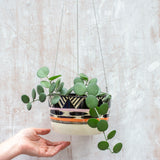 TriBurst - Large Hanging Planter
