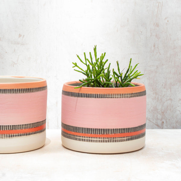 Textured Liquorice All Sorts - Large Planter